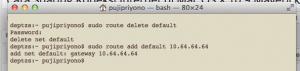 Delete default gateway